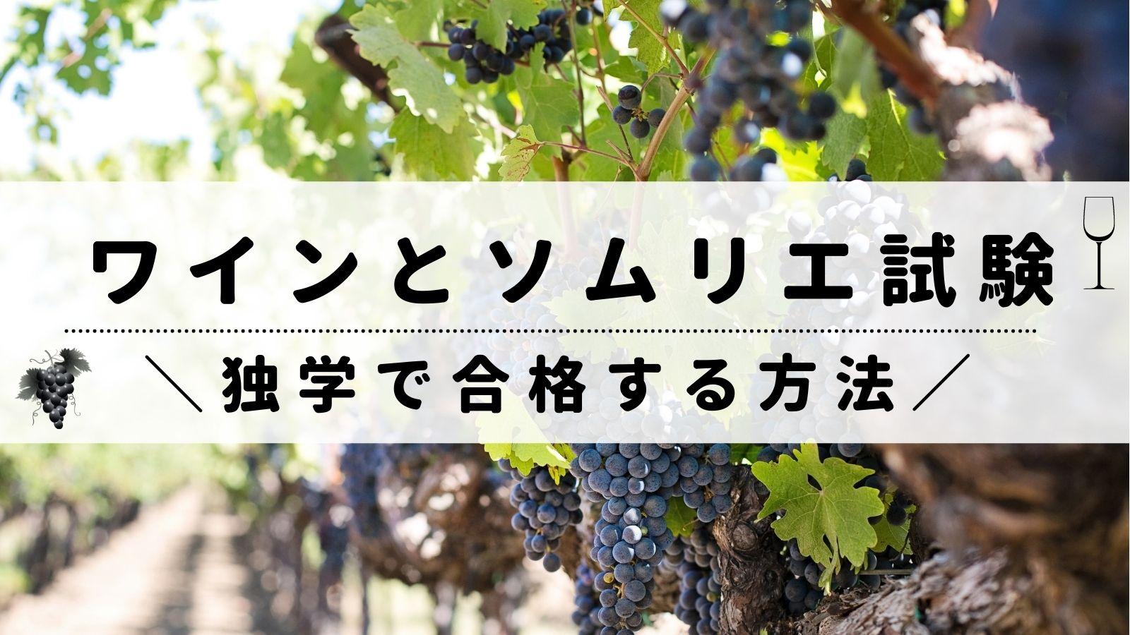 ワイン/ソムリエ試験
